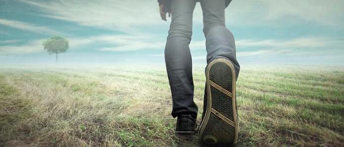 primeiro-passo-do-emprendedor-digital-bruno-pinheiro